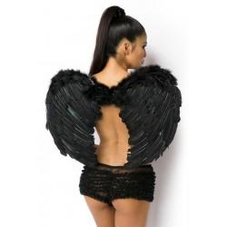 Aripi Cupidon